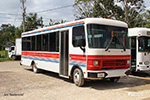 other buses