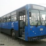 M-Farid-0395