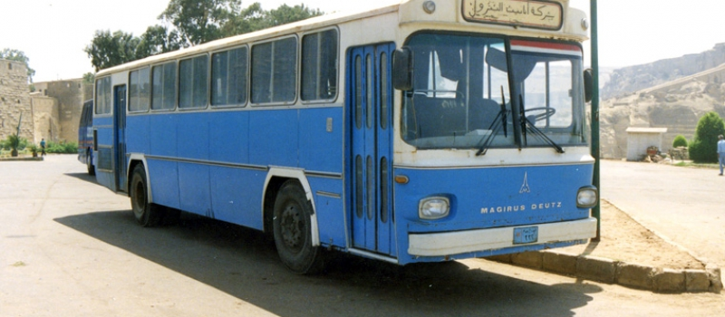 IMPORTED BUSES