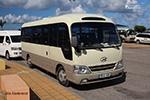 midi buses