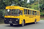 tourist buses